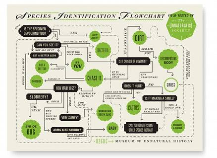 Museum of Unnatural History Species Identification Flowchart